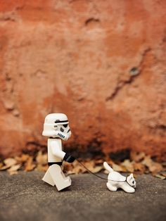 lego star wars stormtrooper white cat Stroll | by Balakov http://www.flickr.com/photos/balakov/9743194200/
