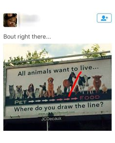 Bout right there... lol God gave us animals for food I don't know why people don't understand that.