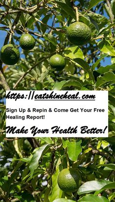 Alternative Therapies, Fruit Trees, Health Problems, Medicine, Therapy, Healing, Wellness, Sign, Make It Yourself