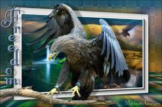 freedom Image Transparent, Ombres Portées, Paint Shop, Bald Eagle, Freedom, Lion Sculpture, Statue, Bird, Psp