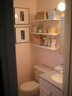 I think I want to do shelves above the toilet...