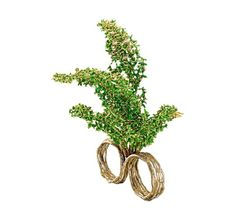 Topiary Garden  The ring is made of hundreds of gold leaves, which form a tree, trimmed in the form of birds. By H. Stern. Price: $7450