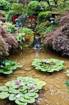 Small waterfall and water garden, Butchart Gardens, Brentwood Bay, BC. Dream Garden, Garden Art, Garden Design, Herb Garden, Beautiful Gardens, Beautiful Flowers, Ponds Backyard, Garden Ponds, Koi Ponds