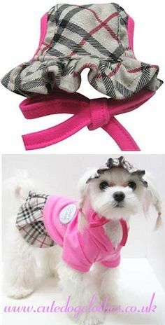 Pink Burberry Dog Hat | Pink Burberry Dog Hat. Grey in colou… | Flickr