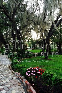 Nature travel in Ocala/Marion County Florida #ad