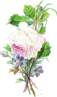 Oblaten Glanzbild scrap die cut chromo Rose 15,5 cm Blume flower