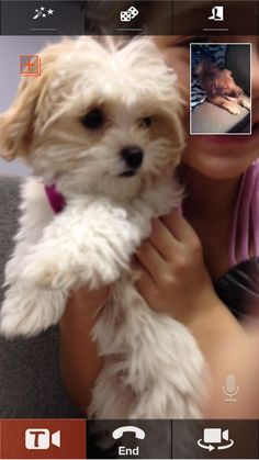 maliboo and mocha chating i have kenzies face time and DONT ask for it thank u