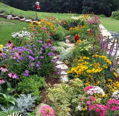 Photo of the Week: A customer's garden in FULL bloom. How many varieties can you name?