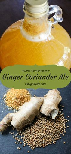 Create a bright and sunny beer using ginger, coriander and orange.  Inspired by the Herbal Academy's new Craft of Herbal Fermentation course!