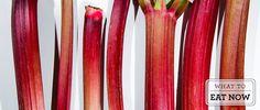 """Rhubarb or """"Red Celery""""! ;-)"""