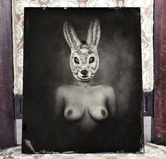 The Rabbit, Ambrotype 24x30cm, 2014