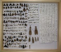 This website ROCKS!  If you want to learn how to collect, CHECK IT OUT!                         Introduction: What's this page about?   Insects are everywhere and they can be found from the hottest desert to the coldest polar regions. With the abundant supply of these invertebrates, you are sure to be able to collect insects no matter where you live and what ever season happen to be upon you. This page will discuss the basics of insect collecting for a beginner. It will give you tips on collecting, pinning, and preserving your collection. Before collecting, you will need some basic but essential equipments which are discussed below in the equipment section: a net, some killing jars or containers such as vials to store your live specimens, and some insect pins.