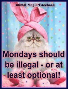 Mondays-illegal or optional? I vote optional