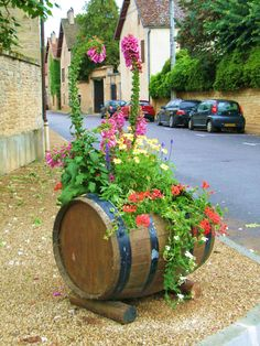 DIY recycled wine or rum barrel planter