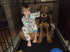 Brady with his puppy, Blue (Airedale Terrier)
