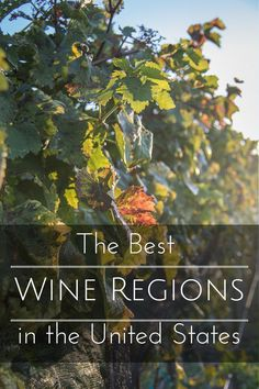 The Best Wine Region