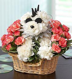 Rock Star Dog (1-800-Flowers in Clark, NJ)