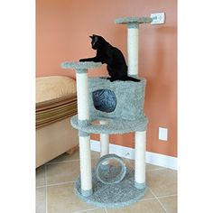 Armarkat Premium Dark Green Cat Condo Pet Furniture * Remarkable product available now. : Cat condo