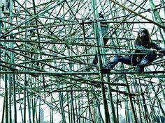 bamboe kunstwerk - Bing Afbeeldingen
