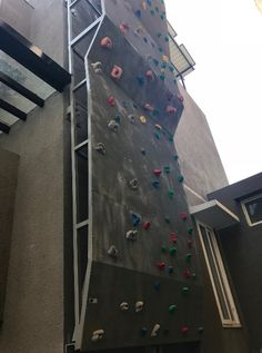 Designed for a family of four including two children under the age of this climbing wall measures 7 ft wide x 24 ft high. It has coloured routes for beginners. Indoor Climbing Wall, Rock Climbing, Children's Playground Equipment, Outdoor Fitness Equipment, Ropes Course, Outdoor Workouts, Walls, Age, Adventure