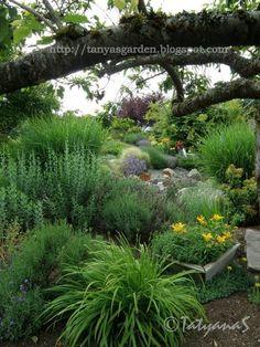 MySecretGarden: Slope Garden Extraordinaire