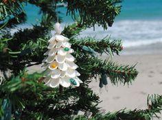 Ornamente de Crăciun, din scoici!