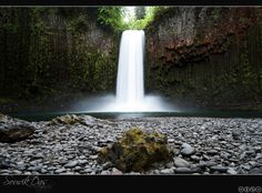 Abiqua Falls is a majestic free-falling waterfall carved into a natural basalt amphitheater in Marion County.