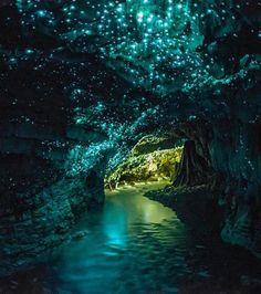 La grotte de Waitomo, en Nouvelle-Zélande abrite une multitude de lucioles bleues qui recouvrent les parois