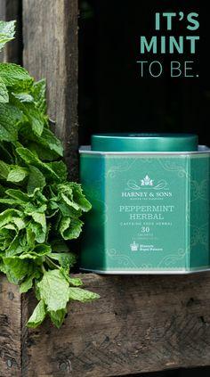 Enjoy Peppermint Herbal, a wonderfully aromatic and crisp-tasting tisane. Hillsborough Castle, Herbal Teas, Beverages, Drinks, Tower Of London, I Love Coffee, Drinking Water, Caffeine, Tea Time