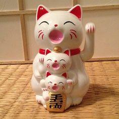 maneki neko stack Japanese Bobtail, Japanese Cat, Cute Japanese, Cats And Kittens, Ragdoll Kittens, Funny Kittens, Bengal Cats, White Kittens, Adorable Kittens