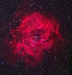 The Rose Nebula #Space