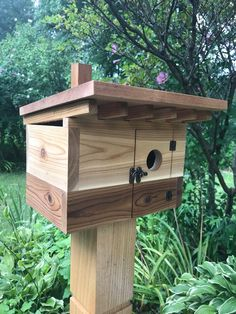 Why Build a Bird Aviary?