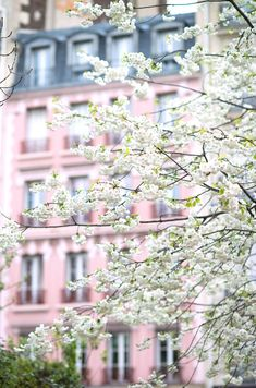 Hey, I found this really awesome Etsy listing at https://www.etsy.com/listing/185095321/paris-photograph-april-in-paris-white