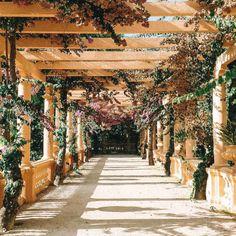 Algarve, Douro, Beautiful Places, Places To Visit, Sidewalk, Nature, Travel, Yearning, Wedding Ideas