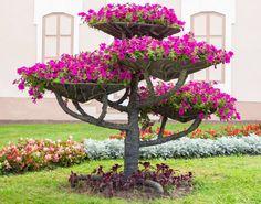 Из сухого - цветущее дерево