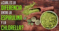 La espirulina es un alga azul-verde de agua dulce rica en proteínas y puede ayudar a estimular su sistema inmunológico y regular los niveles de colesterol y presión arterial. http://espanol.mercola.com/boletin-de-salud/beneficios-de-la-espirulina.aspx