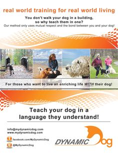 Let us show you how to teach your #dog in a language they understand! We only use mutual respect & the bond between you and your pet.  Register for a class today! www.mydynamicdog.com Serving Southern Ontario.