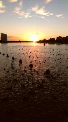 River Shannon in Limerick, Co Limerick