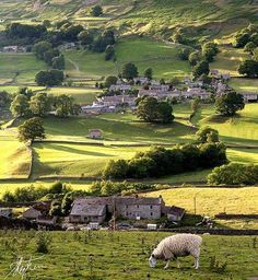 Yorkshire Dales, England …