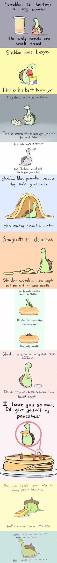 Sheldon is a tiny dinosour that thinks he is a turtle