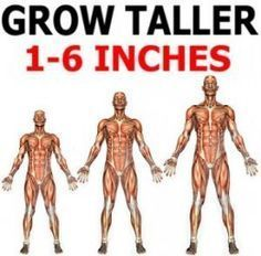 Height growth exercise how to grow taller at would i look with a beard i want to grow 2 inches taller,increase height at home is it possible to increase height. Increase Height Exercise, Tips To Increase Height, Get Taller, How To Grow Taller, How To Get Tall, Grow Taller Exercises, Height Growth, Volleyball Workouts, Growth Hormone