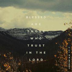 Amen & Thank you dear Lord.