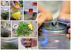 Zielony Zagonek » Naturalny spray przeciw komarom - DIY