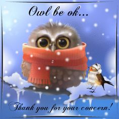 Winter 21st Dec-March 19th/Thank You section. Show your appreciation to anyone with this cute winter ecard! Permalink : http://www.123greetings.com/events/winter/thank_you/owl_be_ok.html