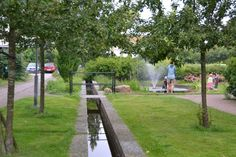 Sustainable Design: Bioswales, canals, and drainage, oh my!