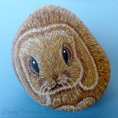 Lop-eared rabbit painted rock