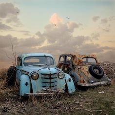 Abandoned cars, fading against the sky.