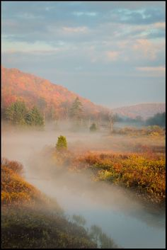 Canaan Valley State Park, WV - by Joseph Rossbach