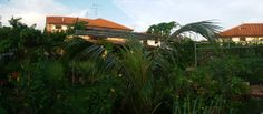 2 Storey Semi  Detached Corner House Taman Impian Emas - Huge Garden - Good For Garden Lovers