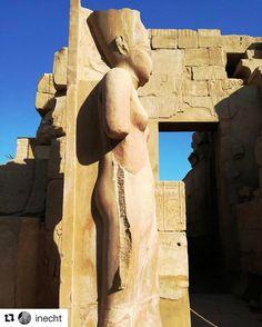 Veldig mye man kan lære når man reiser. #reiseliv #reisetips #reiseblogger #reiseråd  #Repost @inecht with @repostapp  #reise #reiseblog #travelblogger #travels #travel #egypt #ägypten #africa #globetrotter #traveldiaries #karnak #temples #culture